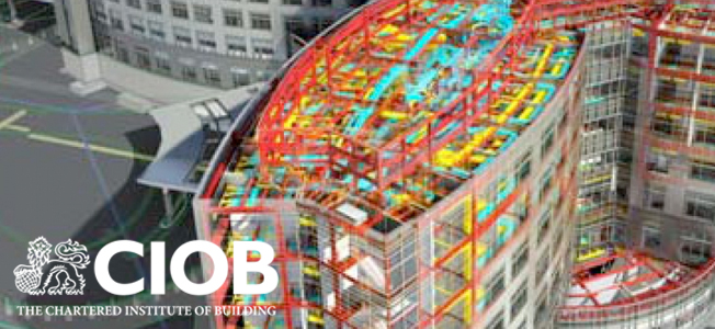 Chartered Institute of Builders, using BIM for construction sites.